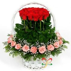 Their beauty lights up your room, Return the favor with our vibrant bouquet of mixed roses in a stunning arrangement in a holding basket. A Nice basket arrangement from MyCityFlowerswith mix coloured roses is a lovely arrangement to give it to your near a Home Flowers, Luxury Flowers, Unique Flowers, Purple Flower Arrangements, Purple Flowers, Red Roses, Modern Floral Design, Flower Boxes, Flower Delivery