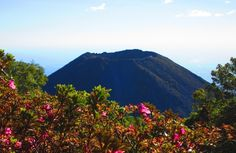 Ruta de las Flores - El Salvador. Tour the hot springs and coffee farms, and travel through the jungle on a 2.5km zip wire.