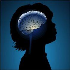 La neuroéducation est un domaine de recherche qui étudie les mécanismes cérébraux liés à l'apprentissage et à l'enseignement. C'est une discipline qui est née en 2007, suite à