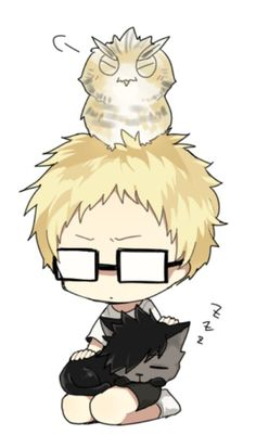 Haikyuu: Tsukishima Kei with Bokuto and Kuroo cat version