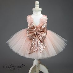 The Princess Aisha dress in Rose Gold is pretty and sweet - just like your little girl! Fluffy layers of soft blush pink tulle make up the tutu skirt. Blush pin