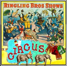 RINGLING BROTHERS SHOWS: CIRCUS, Extremely Rare, Posterbobs   Exclusive, 1895 Giclee