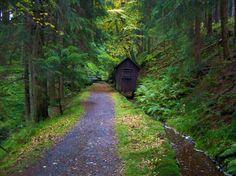 Der Harzer-Hexen-Stieg ist kein einfacher Wanderweg- hier können Sie auf nur einer Wanderroute den gesamten Harz genau kennenlernen. Auf 94 km führt die Strecke diagonal über den Harz!