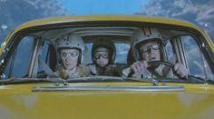 Wes Anderson 670x372 La vie aquatique