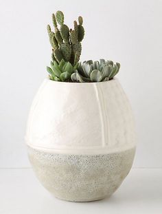 Subtle contrasting glazes and textures on this vase.  And, cacti look comfy.