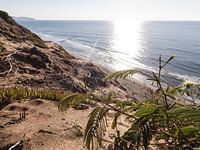 Get to Know the Hidden Away Fort Funston Coastal Park - Park Life - Curbed SF @Sameh Elamawy speaking of Fort Funston
