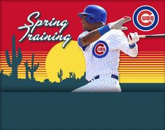 Spring Training, AZ. Whether you are a die hard Cubs or Sox fan, dodging the Chicago winter and heading to AZ for Spring Training games is a must do.