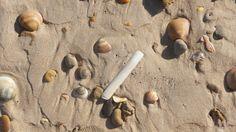 Playa de Conil in Conil de la Frontera, Andalucía