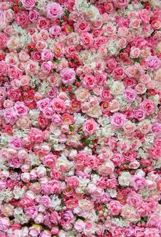 Purchase floral backdrop for pictures photography backdrops flowers for wedding floral background for party from Andrea Marcias on OpenSky. Share and compare all Electronics. Muslin Backdrops, Wall Backdrops, Custom Backdrops, Flower Wall Backdrop, Floral Backdrop, Backdrop Background, Background For Photography, Photography Backdrops, Flower Photography