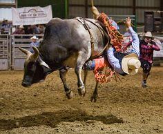 Sisters Rodeo, next weekend.