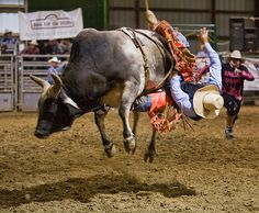Sisters Rodeo, next weekend.