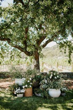 Laid-back Sonoma Wedding at Home ⋆ Ruffled Wedding Flower Photos, Wedding Flowers, Backyard Vineyard, Rustic Italian Wedding, Montage Laguna Beach, Italian Garden, Event Planning Design, Bridal Salon, Home Wedding