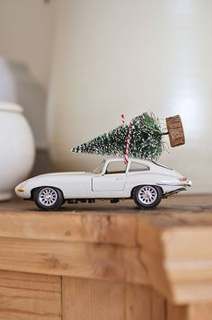 ...bristle brush tree atop a toy car...