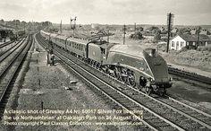 David Heys steam diesel photo collection - 46 - 1960s MORE MEMORIES 2 Old Steam Train, Steam Railway, Old Trains, Train Car, Steam Engine, Steam Locomotive, Buses, Railroad Tracks, Childhood Memories