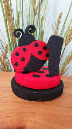 Partido de la mariquita Cat Costumes, Halloween Costumes, Number 15, Ladybug Party, Decorate Your Room, Lady Bug, It's Your Birthday, A Table, Hanger