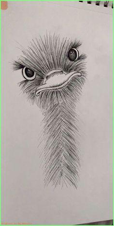 kleiner Straußenfreund ) art animalart drawing sketch drawings art is part of Bts drawings Easy Anime - kleiner Straußenfreund 🙂 art animalart drawing sketch kleiner Straußenfreund 🙂 art animalart drawing sketch animalart See it Cool Art Drawings, Pencil Art Drawings, Doodle Drawings, Animal Drawings, Easy Drawings, Drawing Sketches, Drawing Ideas, Drawing Tips, Drawing Skills
