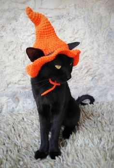 Witch Hat for Cat Pet Costume Cat Halloween Costume Pet Halloween Witch Outfit Gift for Pet Lover Halloween Costume for Pets Crochet Pet Halloween Costumes, Dog Halloween, Witch Costumes, Pet Costumes For Cats, Elf Costume, Witch Hats, Halloween Witches, Christmas Costumes, Costume Makeup