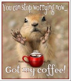 coffee quotes Quotes coffee funny humor kaffee Ideas for 2019 Coffee Talk, Need Coffee, Coffee Is Life, My Coffee, Coffee Drinks, Coffee Mugs, Coffee Lovers, Coffee Zone, Happy Coffee