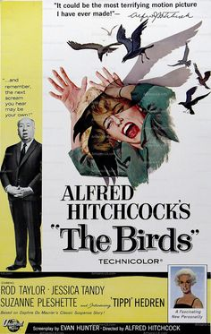 The Birds Alfred Hitchcock Tippi Hedrin 1963 Movie Poster Download Restored Classic Movie Prints No 1463