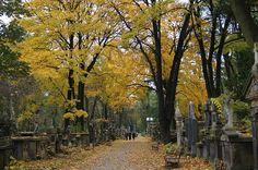 Rakowicki Cemetery, main alley, Krakow, Poland