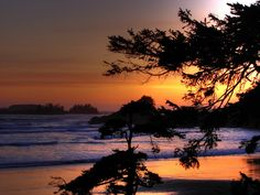 Map from Tofino, BC, Canada to Port Hardy, BC, Canada and route conditions Tofino Bc, Super Natural, British Columbia, Canada, Map, Sunset, Nature, Outdoor, Beautiful