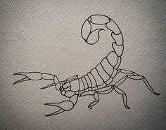 Striped Bark Scorpion #drawing #linework #neotraditionalflash #arachnid #animal #painting #art #sketch #doodle #illustration #flashart #tattoo #tattoodesign #graphicart #instaart #blackink #stripedbarkscorpion #insect #traditionalflash #tattooart #ink by jeffcusackart
