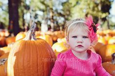Pumpkin Patch Mini Session with Tara Merkler Photography