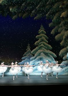 nutcracker ballet gorgeous snowy..never forget her dancing in this performance