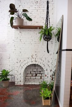 White brick with plants