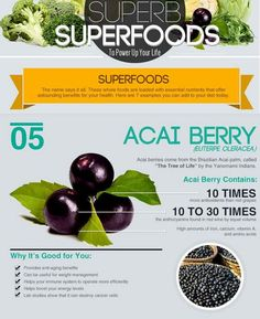 Acai Berry: Why It Is Good For You