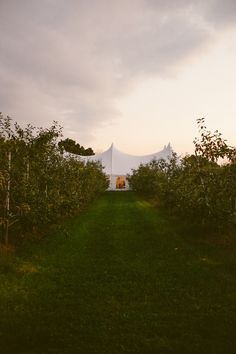 Everything you need to know to rent a wedding tent. From figuring out the size, to thinking about extras, to sample wedding tent price, we& got it all. Practical Wedding, Tent Wedding, Bhldn, Country Roads, Sunset, Tents, Bliss, David