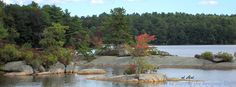 Autumn view from Deer Cove on the Narragansett and Yellow trails in Camp #Yawgoog, Rockville, Hopkinton, Rhode Island (RI).  A 2013 Facebook cover photo by David R. Brierley.