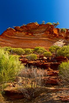 Kalbarri National Park, Northern Territory, Australia -by Wim Hoek Western Australia, Australia Travel, Queensland Australia, Kalbarri National Park, Beautiful World, Beautiful Places, Nature Sauvage, Voyager Loin, Australian Continent