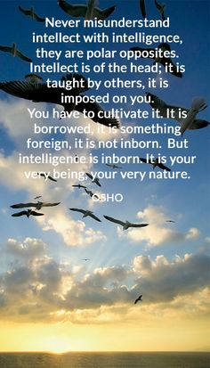 Never misunderstand intellect with intelligence, they are polar opposites. Intellect is of the head; it is taught by others, it is imposed on you. You have to cultivate it. It is borrowed, it is something foreign, it is not inborn. But intelligence is inborn. It is your very being, your very nature. OSHO #misunderstand #intellect #intelligence #polar #opposites #head #foreign #being #nature #osho