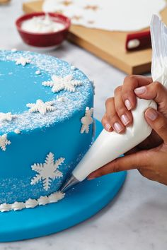 Winter Cake Kit – How to Make a Snowflake Cake featuring Cake Boss