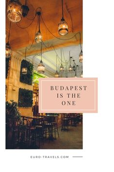 Whether you are native to Budapest or visiting this beautiful city, you will definitely want to check out the nightlife. Budapest Guide, Visit Budapest, Budapest Travel, Budapest Hungary, Budapest Nightlife, Budapest Christmas, Budapest Things To Do In, Jazz Bar, Travel Things