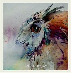 Watercolor owl by Natalie Graham