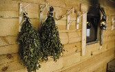 tree branches cut for hooks Traditional Saunas, Birch Branches, Travel And Tourism, Love People, Finland, Baths, Hooks, Scandinavian, Wellness
