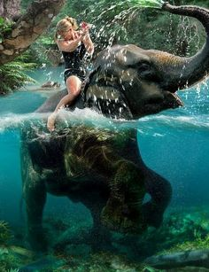Cameon Andersens Photos : Photo Keywords : water : Elephant Ride -- Literal like goal Life In Paradise, Paradise On Earth, Jehovah Paradise, Beautiful Creatures, Animals Beautiful, Cute Animals, Wild Animals, Oh The Places You'll Go, Places To Travel