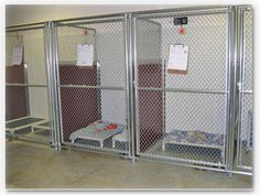 Colored dividers... adds color to the bland chain link... Hmmmm
