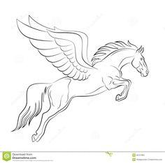 pegasus outline | Pegasus Stock Photo - Image: 28121860