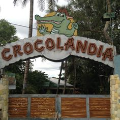 Explore the animal world at Crocolandia in Biasong, Talisay City, Cebu, Philippines. Managed by the Crocolandia Foundation, Inc. Crocodiles, Places Of Interest, Cebu, Philippines, Marvel, Neon Signs, Explore, Crocodile, Cebu City