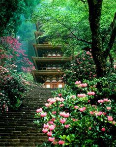 Five-storied Pagoda of Murou-ji temple, Uda, Nara 室生寺