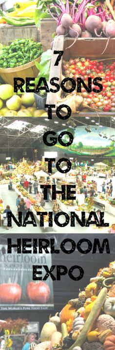 7 Reasons Why I Am Going to the National Heirloom Expo Ecommerce Hosting, Growing Vegetables, Garden, Lawn And Garden, Gardens, Planting Vegetables, Outdoor, Home Landscaping, Tuin