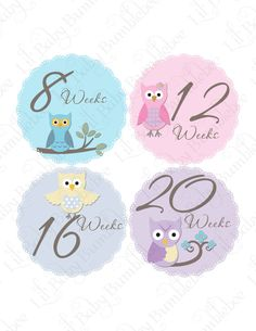 Pregnancy Stickers Baby Bump Belly Stickers - Monica -Sweet Owls in Pastel Pink, Purples and Blues - Great Photo Prop for Expectant Moms. $9.00, via Etsy.