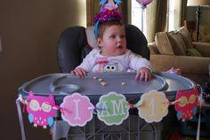 Owl Theme Birthday Party Ideas | Photo 1 of 13 | Catch My Party