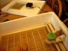 Home Made Incubator with Automatic Egg Turner - YouTube