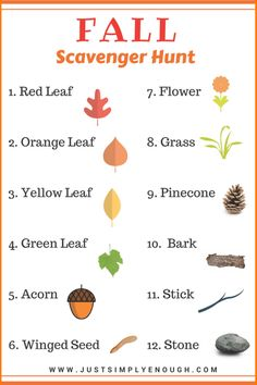 Fall Scavenger hunt for kids. Get your kids outside and exploring nature with this fun fall scavenger hunt, great for toddlers. Autumn Activities For Kids, Fall Crafts For Kids, Craft Activities, Toddler Activities, Outdoor Activities, Outdoor Learning, Preschool Theme Fall, Fall Art For Toddlers, Calendar Activities