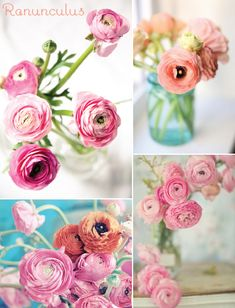 Ranunculus are one of my favorite flowers! <3 Definitely had them at our wedding :)