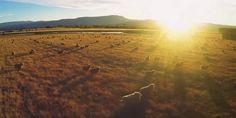 L'Australie vue du ciel en caméra embarquée. Cool !